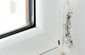 problema muffa in casa soluzione infrarossi